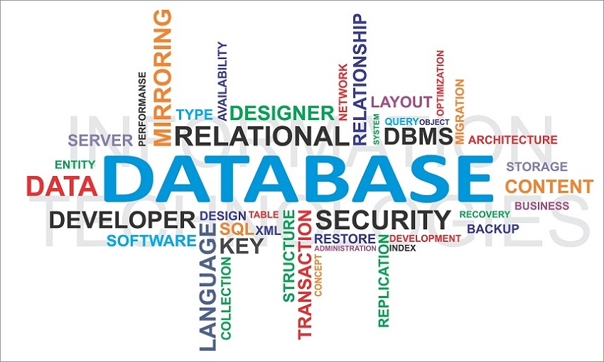 Your database is very precious. Take good care of it.